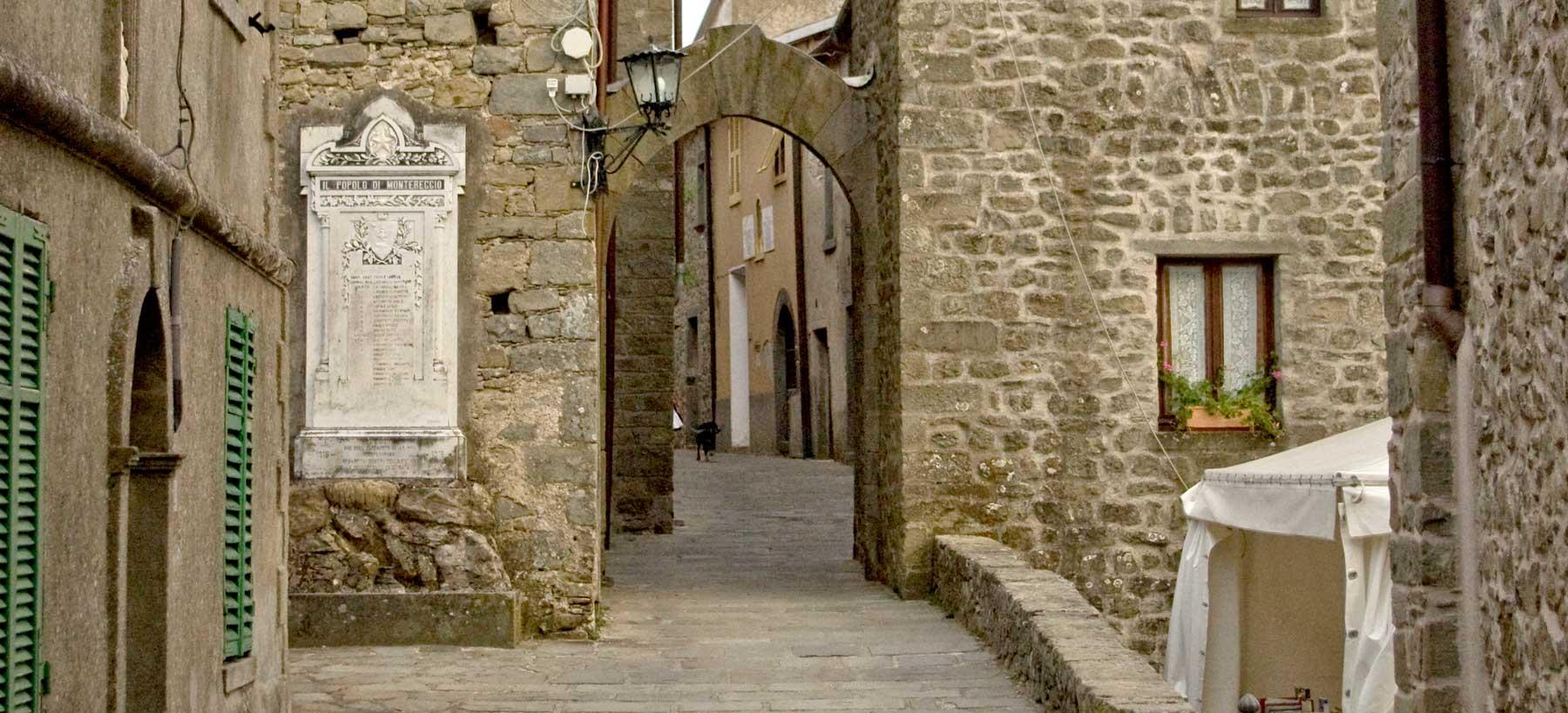A Montereggio, il paese dei Librai