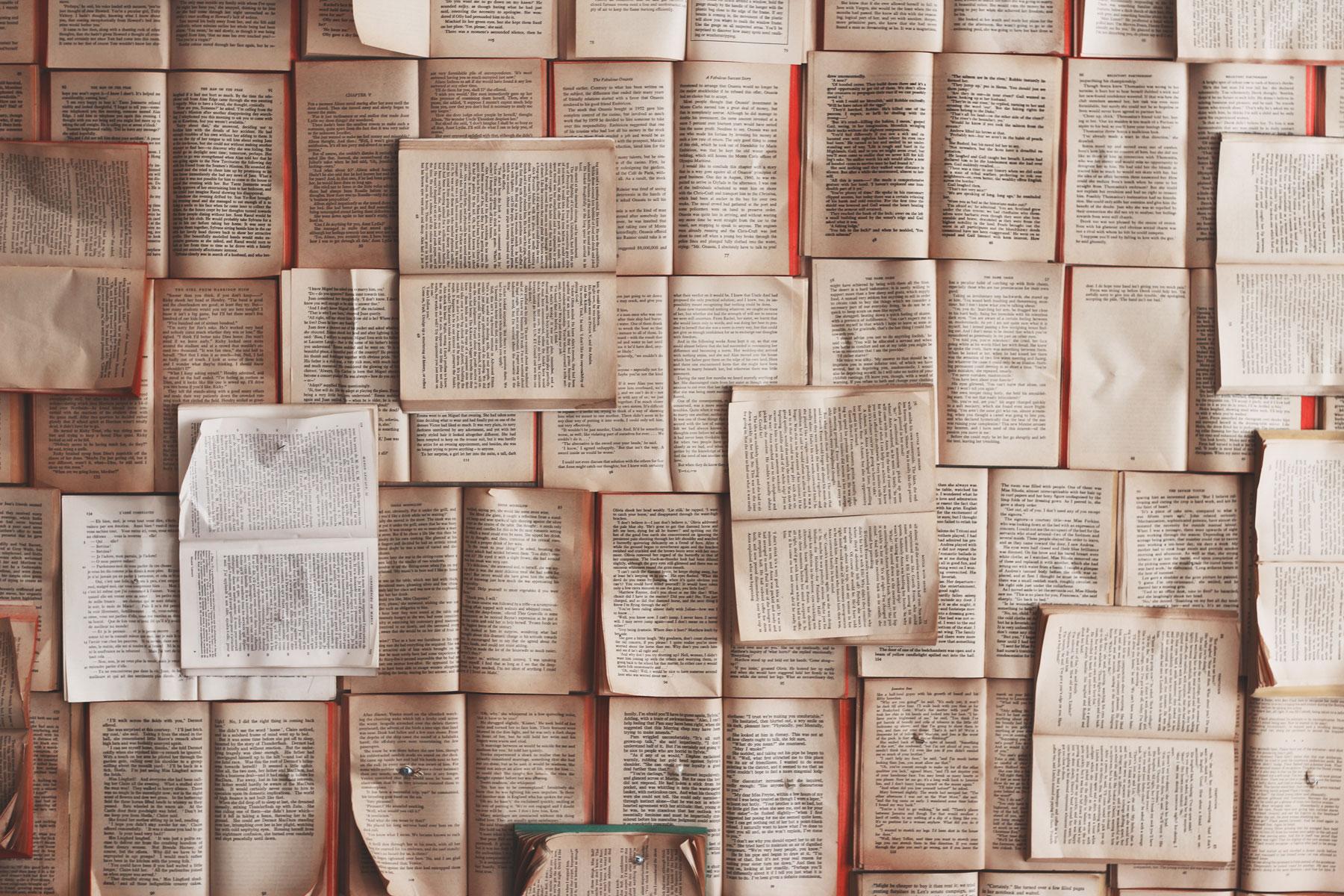 Pronti per TheFLR? La rivista bilingue finanziata col crowdfunding